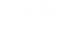 GAELFORCE SKY RUN